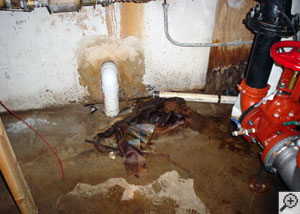 A basement flooding from the floors and walls