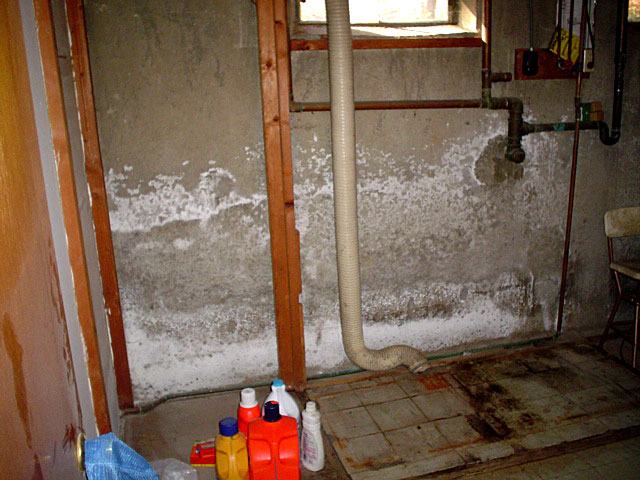 Causes To Use The Water Sealant Paint For Basement