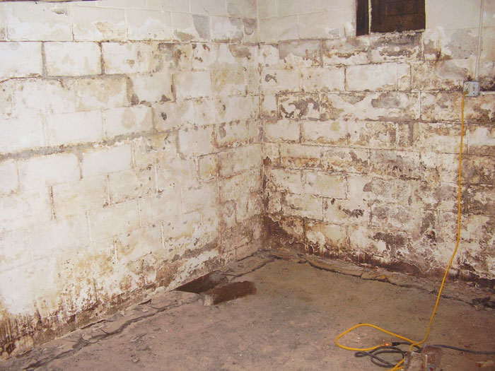 Reasons To Use The Water Sealant Paint For Basement Waterproof paint thatu0027s ugly, stained, and flaking off the basement walls.