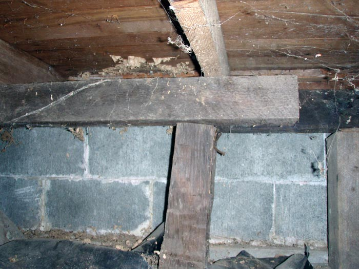 Crawl space structural repair for Wood crawl space foundation