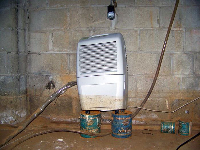 basement dehumidifier sitting on top of two cans to keep it out of