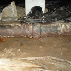 Eliminating Musty Smells In Crawl Spaces