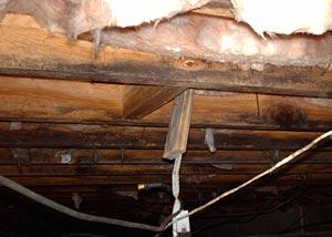 Repairing Wood Damage In A Crawl Space