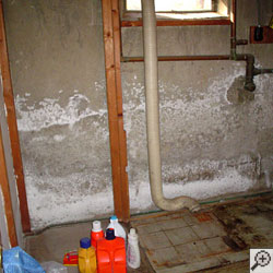 dealing with stains peeling paint efflorescence on concrete walls
