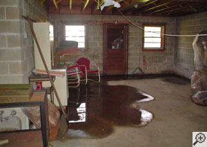 water pooling on the floor of a wet basement.