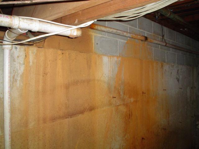 basement environments waterproofing a basement with iron bacteria