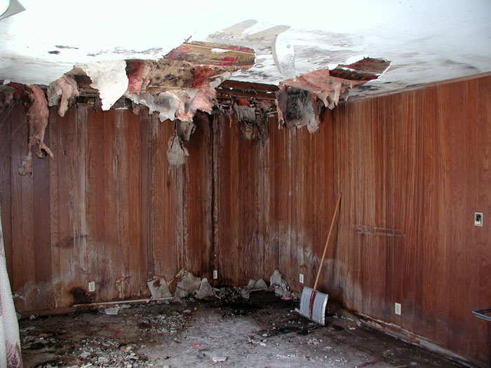 A finished basement that has been completely destroyed by flooding, mold,  rot, and