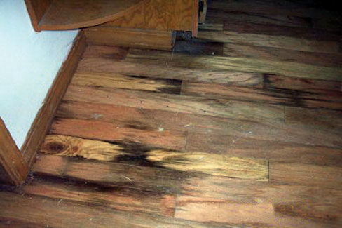 laminate flooring for basement. Basement Water Has Flooded Over This Wood Floor, Leaving Rot, Mold, Discoloration, Laminate Flooring For .