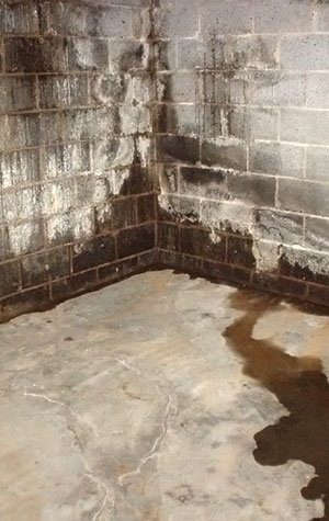 basement walls what works and what doesn 39 t work for wall leak