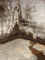 Leaking Windows, Moisture Seeping Through A Basement Wall Great Ideas