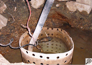 A sump pump with an old-fashioned float switch installed in a sump pit.